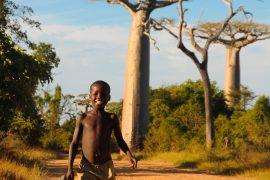 Madagascar les Tsingy région-3257