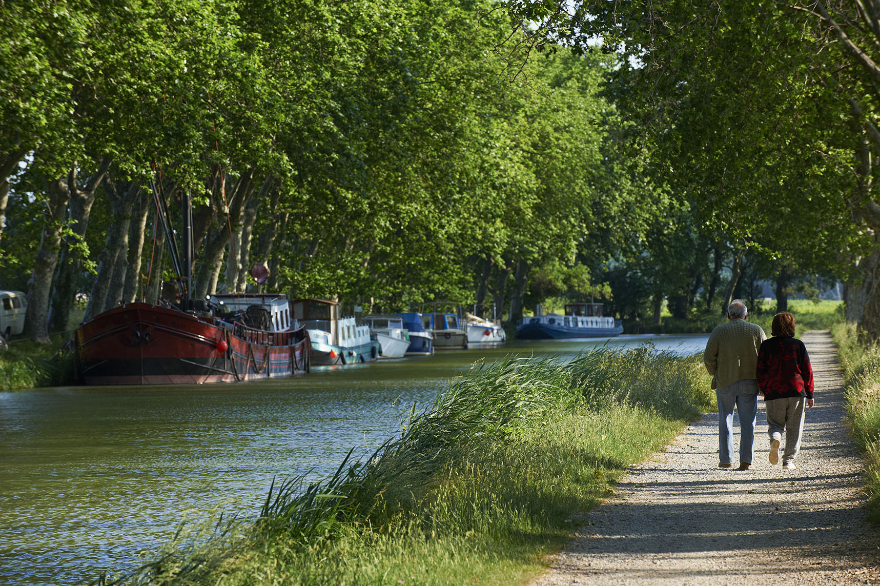 France, Languedoc-Roussillon, Aude (11), city of Le Somail, Canal du Midi, river harbour