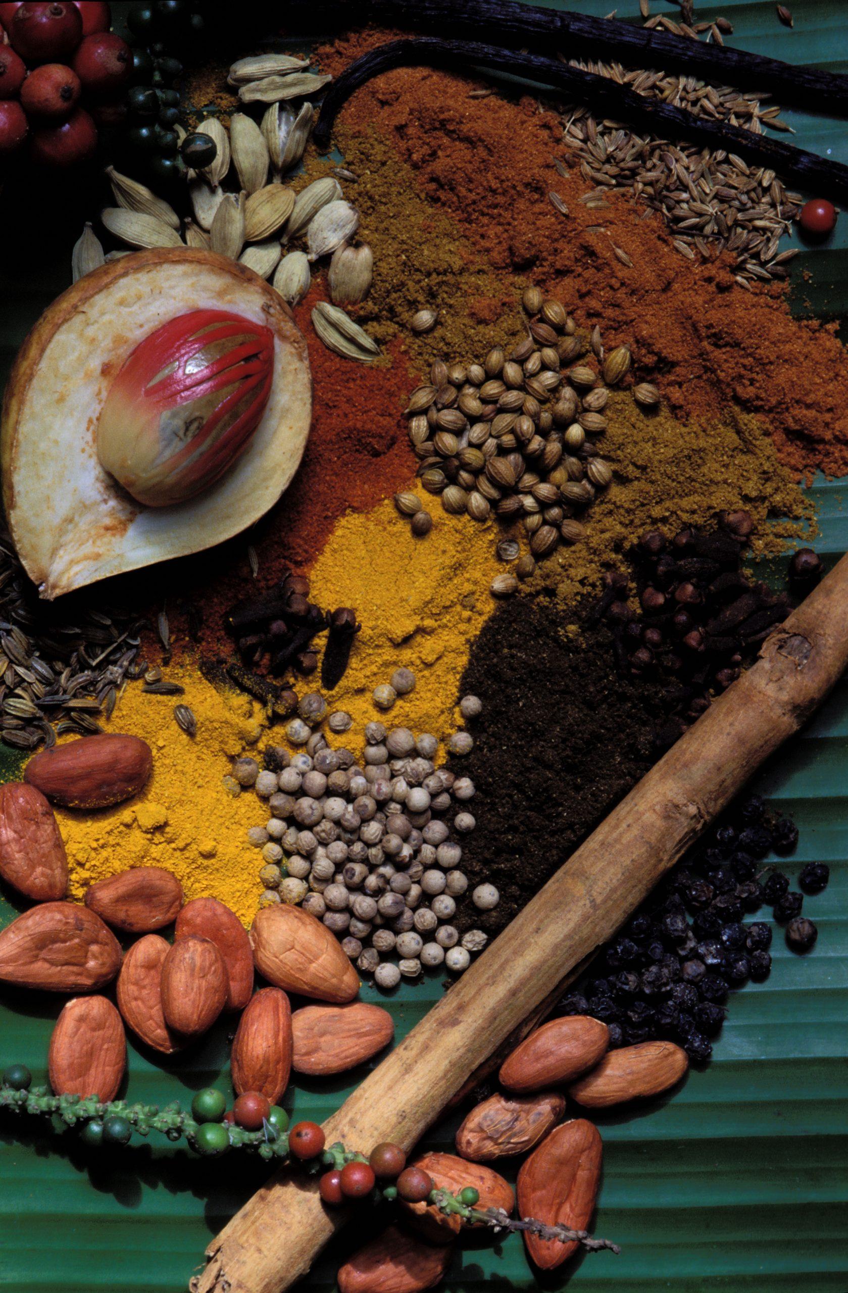 Sri Lanka - region Centre - Kandy - Epices au jardin d'épices