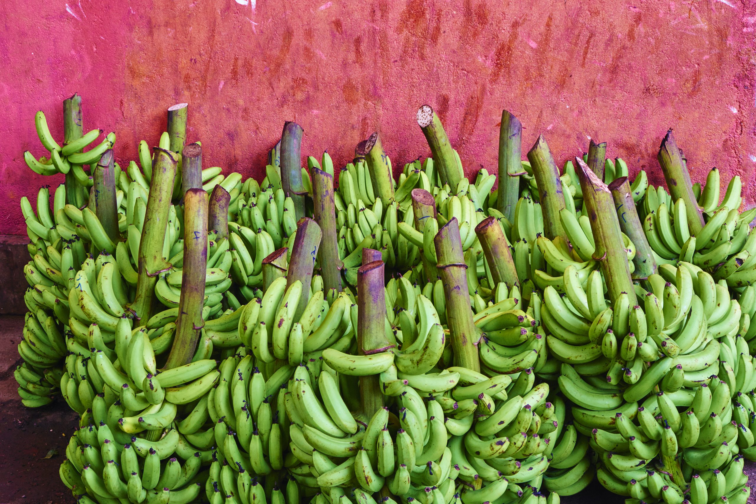 Sri Lanka, Dambulla, market