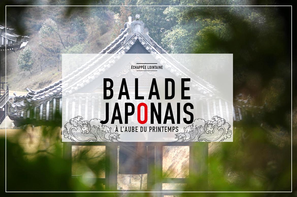 5_JAPON