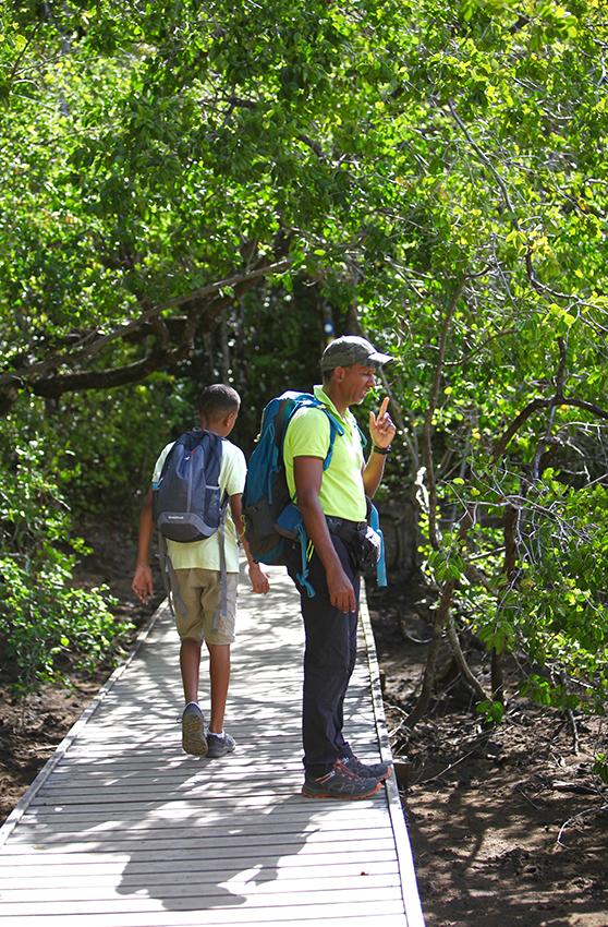 IMG_4820_ la mangrove