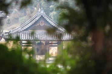 N°16 – Balade Japonais à l'aube du printemps