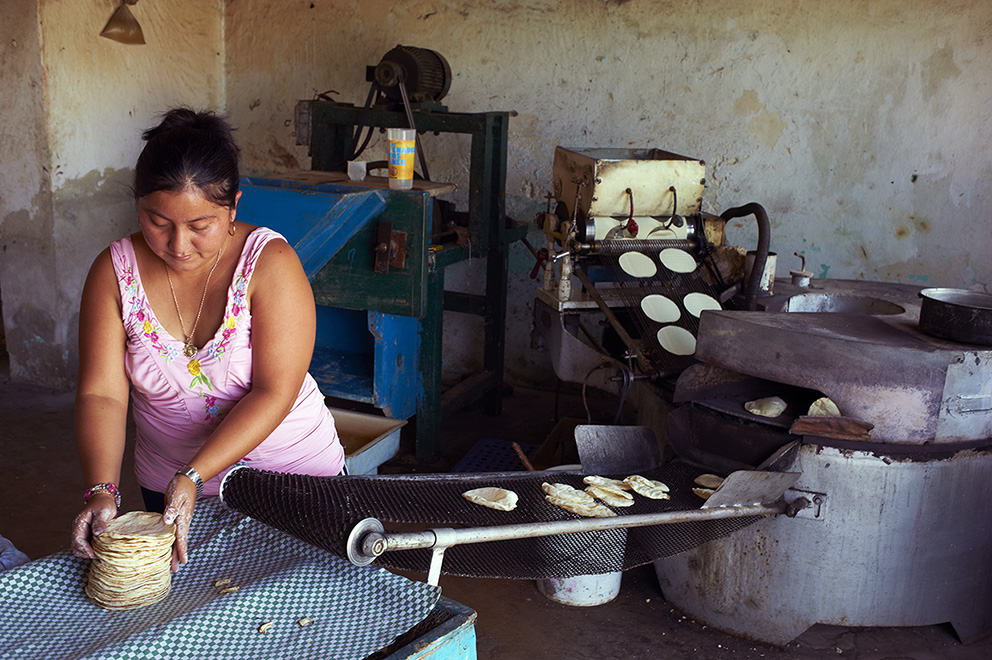 Mexico, Yucatan state, Merida, the capital of Yucatan, tacos factory