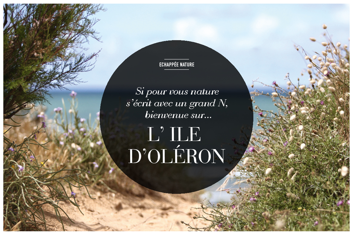 1_ILE_DOLERON
