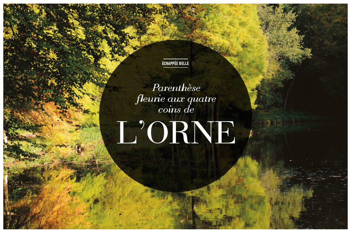 3_LORNE