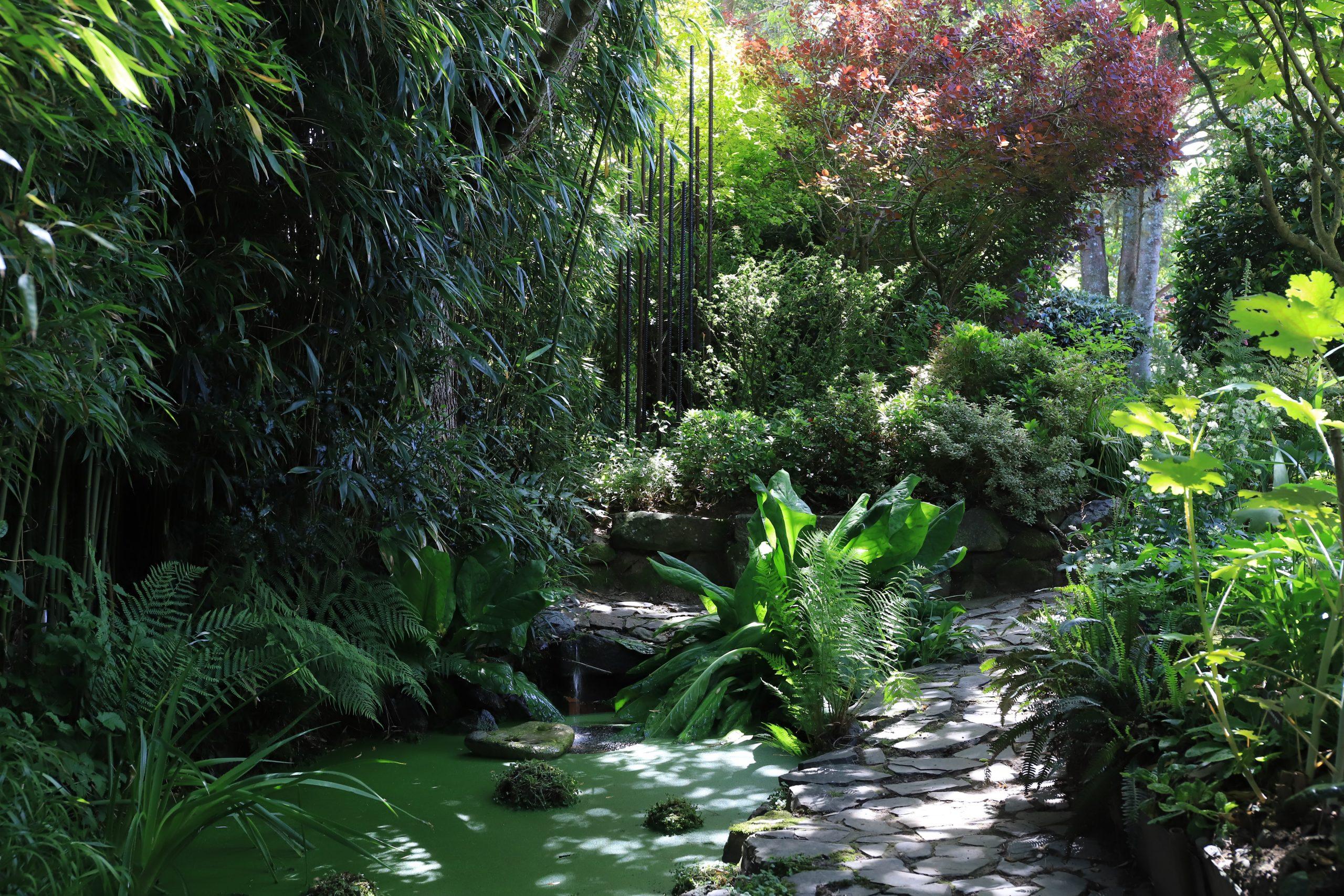 Athis de l'Orne jardin intÇrieur 05 2020∏j.e Rubio-CD61-2020 (76)