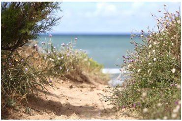 N°20 – Si pour vous nature s'écrit avec un grand N, bienvenue sur l'Ile d'Oléron.