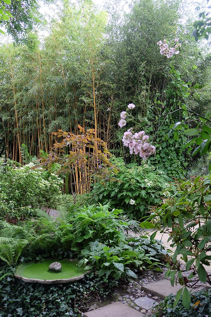 jardin interieur 6 © ep