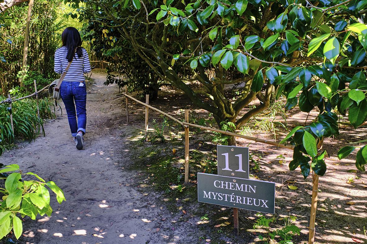 France, Normandy, Manche department, Cotentin, Cap de la Hague, Vauville, botanical garden of Vauville