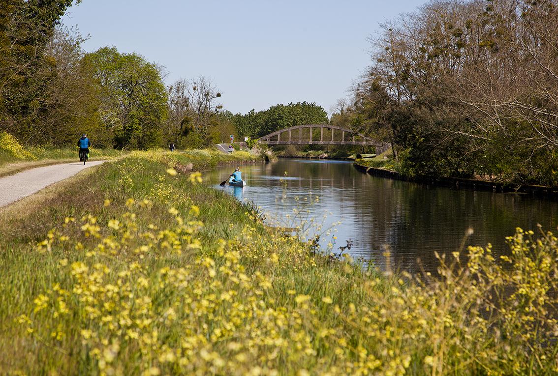Canal-de-la-Garonne-IMG_8493