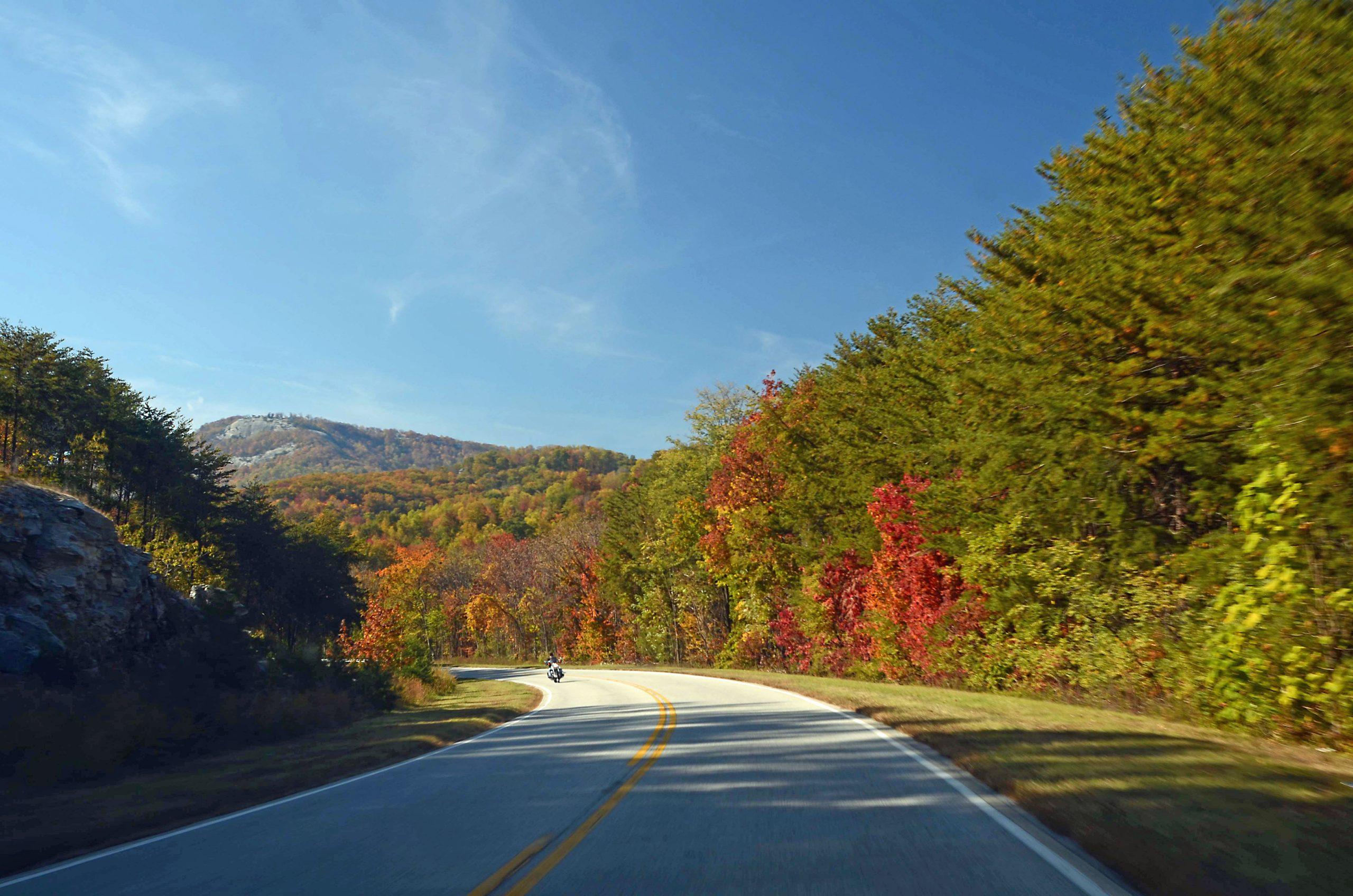 Caroline du Sud_Highway 11