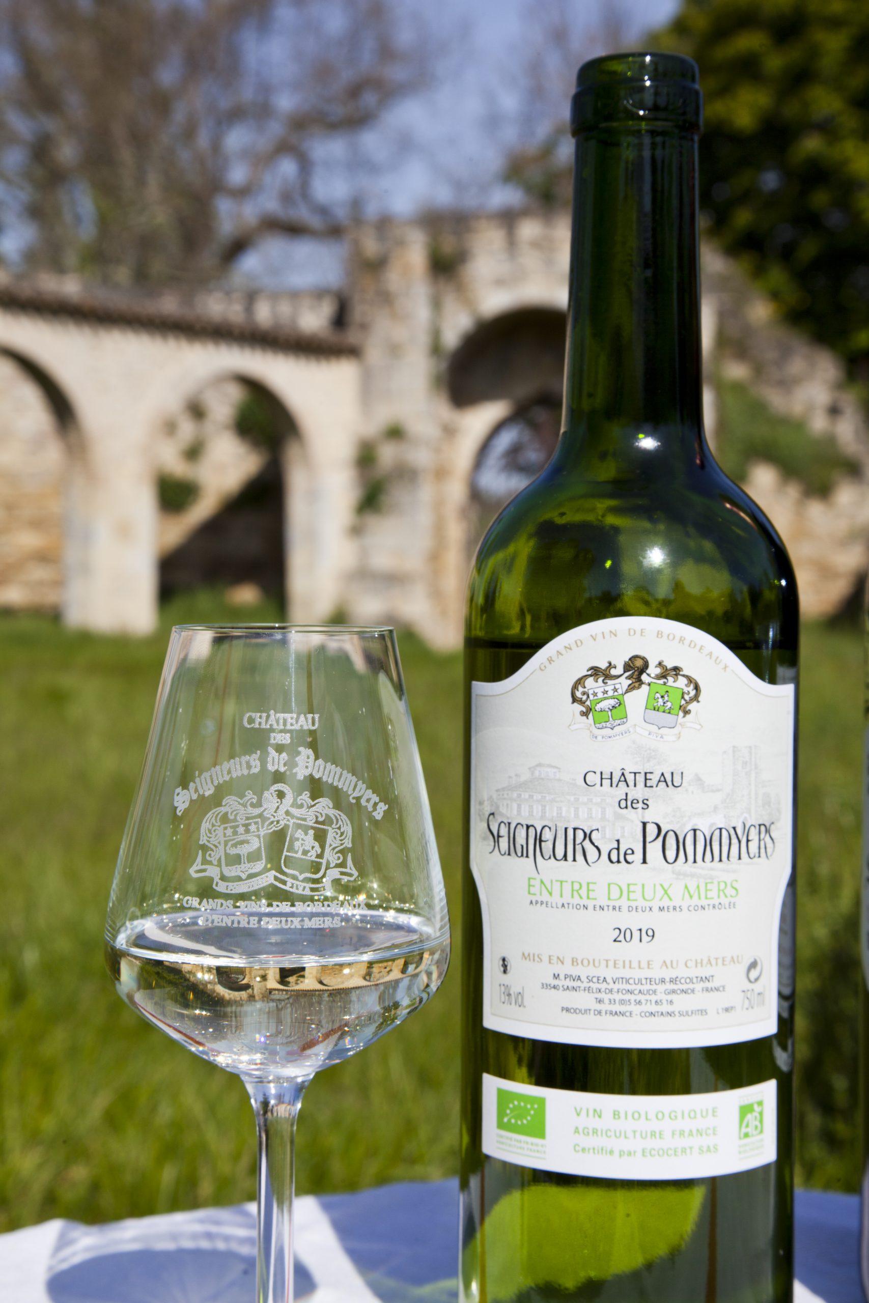 Castrum-de-Pommiers-Chateau-des-Seigneurs-de-Pommyers-IMG_8159
