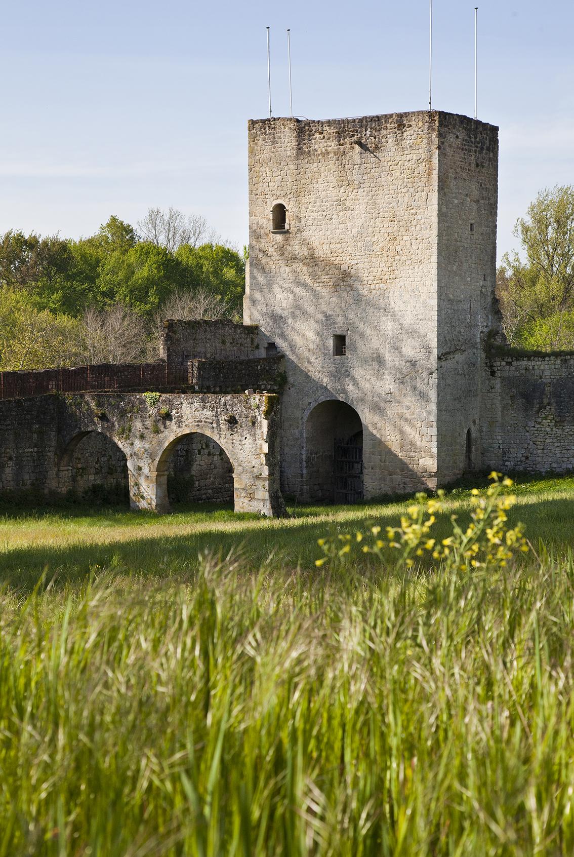 Castrum-de-Pommiers-IMG_8105