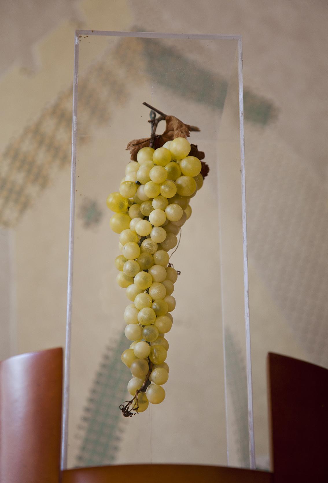 Maison-des-vins-de-l-Entre-Deux-Mers-IMG_7789