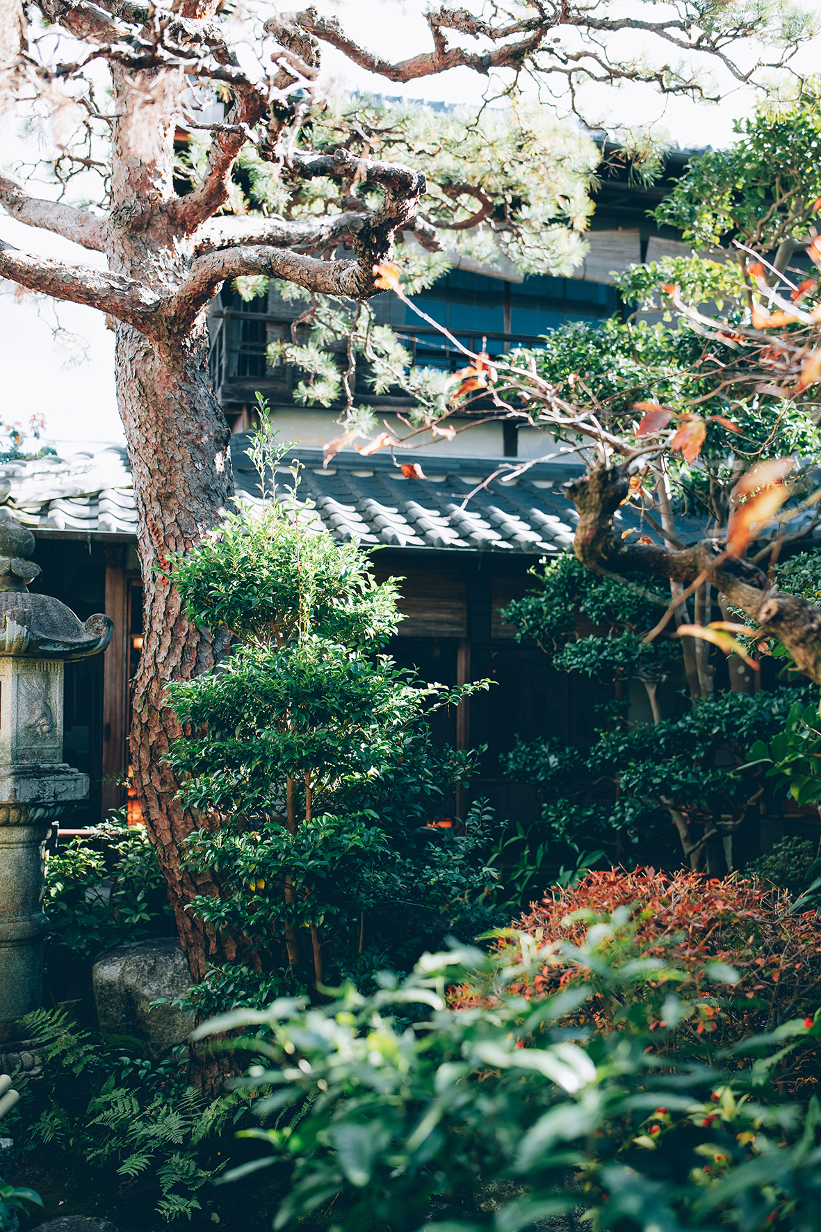 Restaurant bento Matsusaka - Matsusaka, Mie