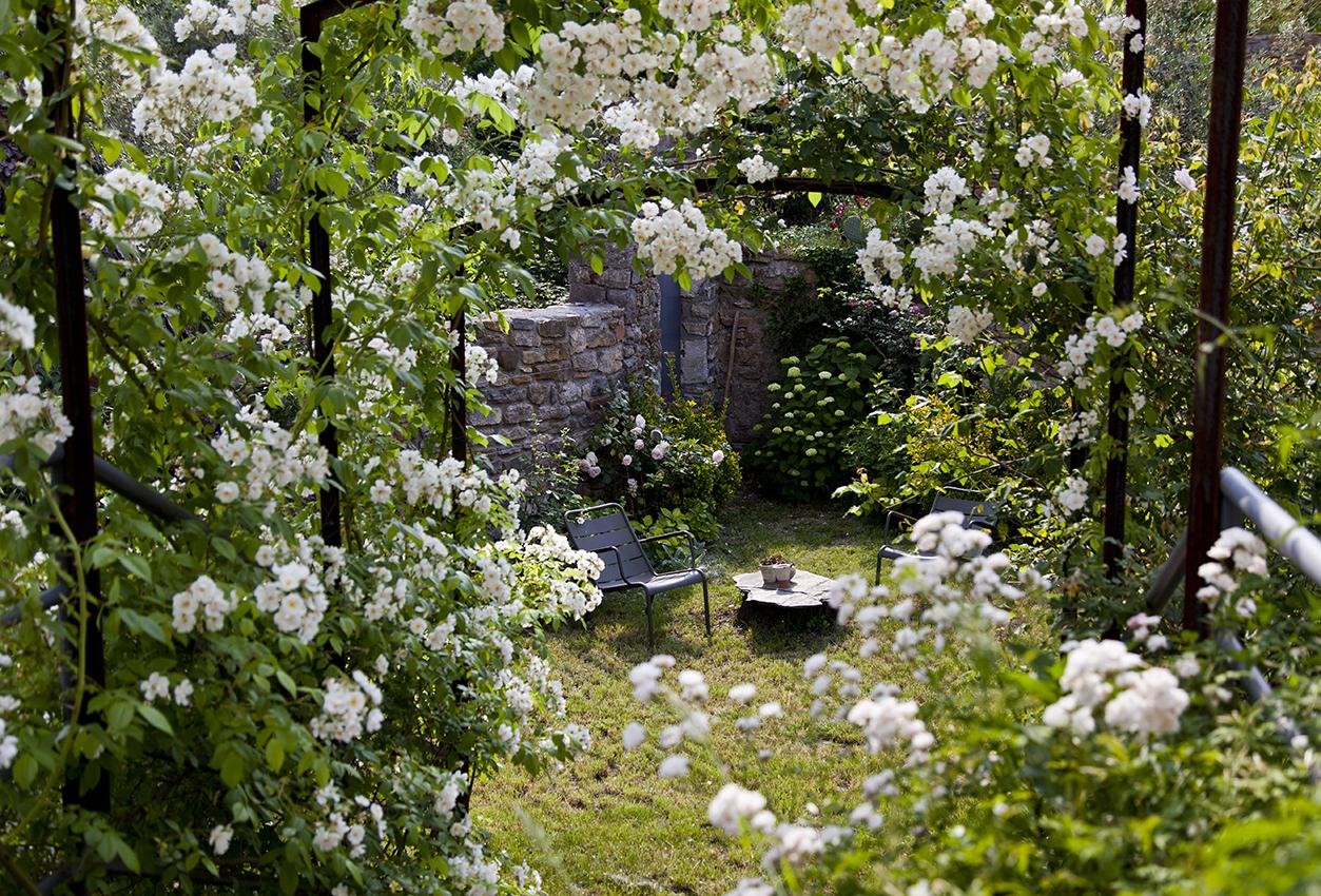 jardin-IMG_4343