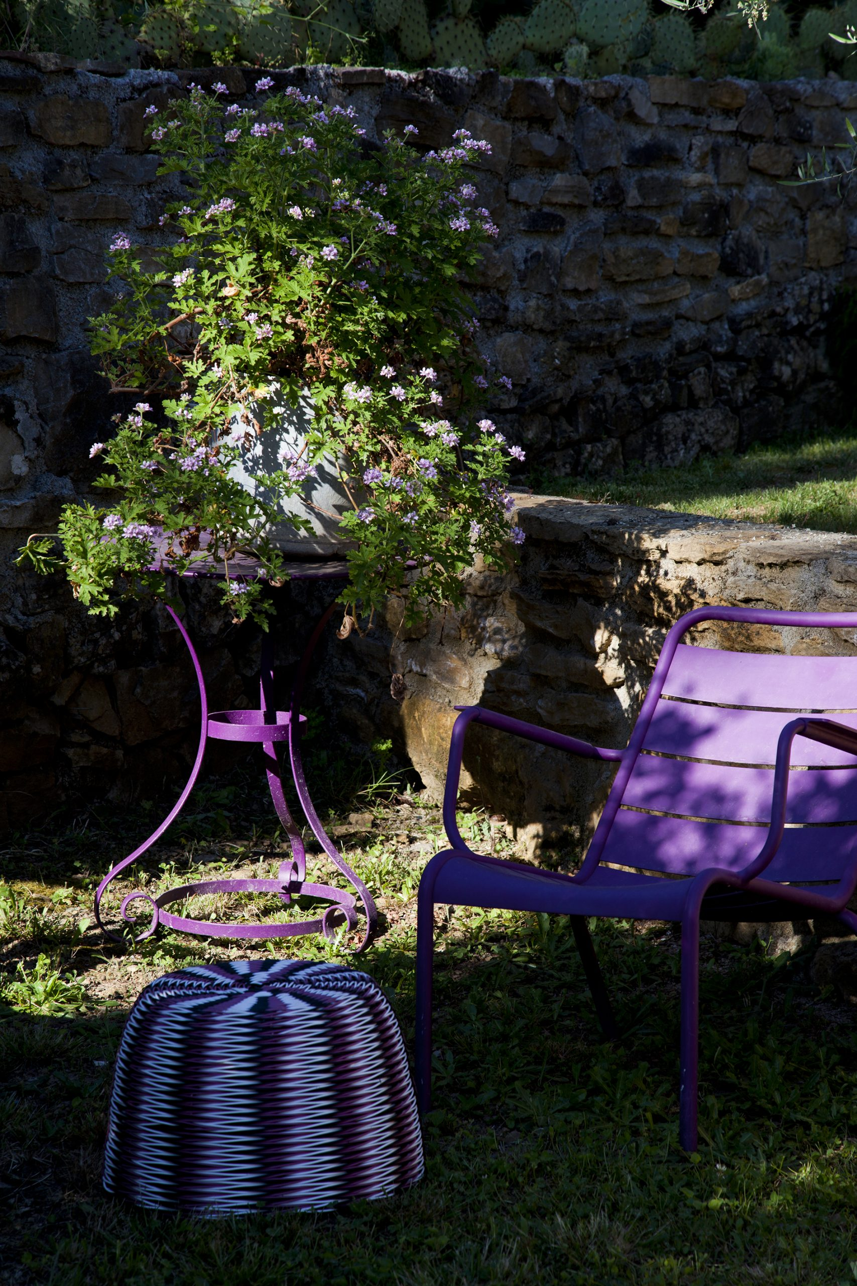 jardin-IMG_4547