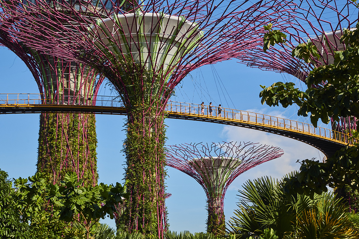 Singapore, Garden By the bay, Supertree Grove